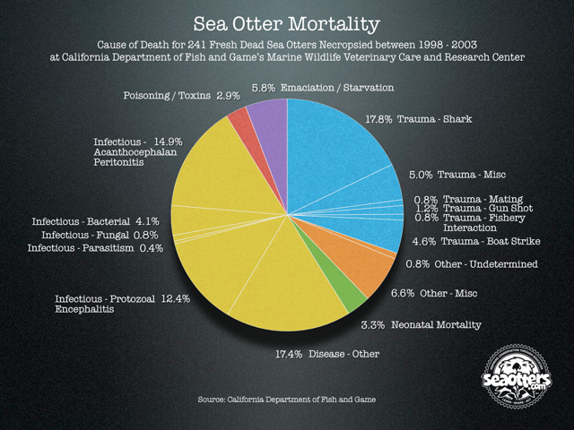 Mortality Pie Chart: 1998 - 2003