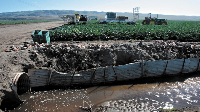 Runoff from farmland near the Santa Maria River drains from ditches to the river.
