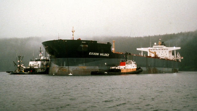 Today on the 23 Year Anniversary of the Exxon Valdez Oil Spill, We Welcome You to Seaotters.com