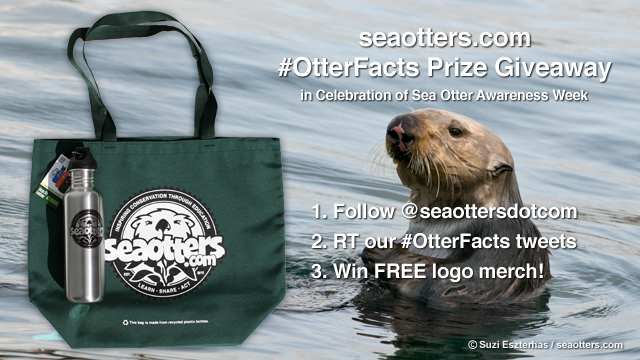 Seaotters.com #OtterFacts Prize Giveaway